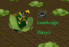 Lumbridge Diary